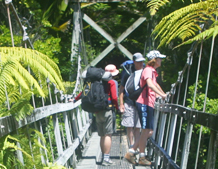 Walking the Abel Tasman National Park