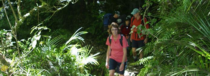 Abel Tasman private hiking