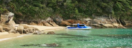 Walk the Abel Tasman Park