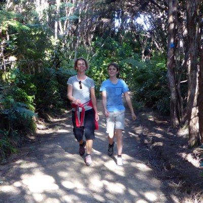 Walking on the Abel Tasman Track