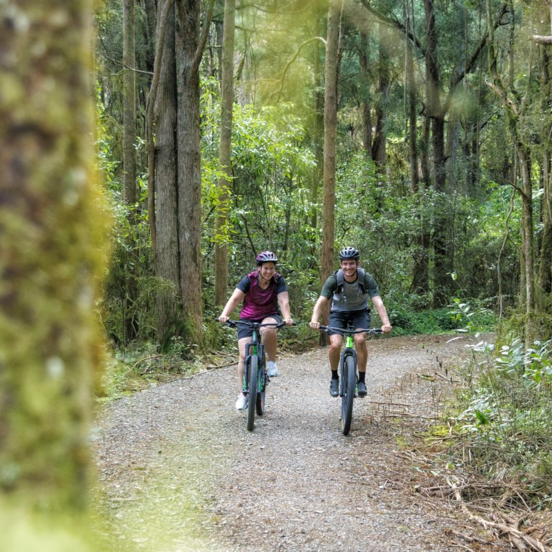 Cycling with Simply Wild on The Great taste Trail