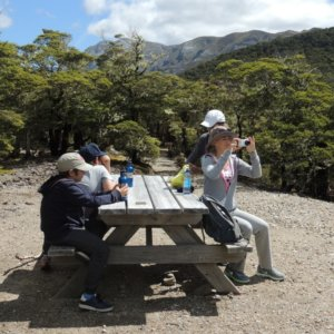 Mt Arthur walk, Kahurangi National Park (4)